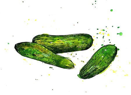 side dish: Cucumbers, drawing by ink and watercolor with paint stains, hand drawn vegetables, vintage design elements, hand drawn vintage artistic painting illustration