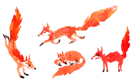 set of watercolor foxes, hand drawn artistic painting  illustration Stock Photo