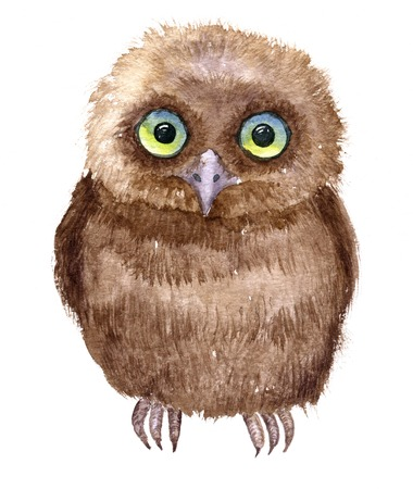 nestling: Little owl drawing by watercolor, artistic painting bird, cute fluffy nestling, hand drawn illustration Stock Photo
