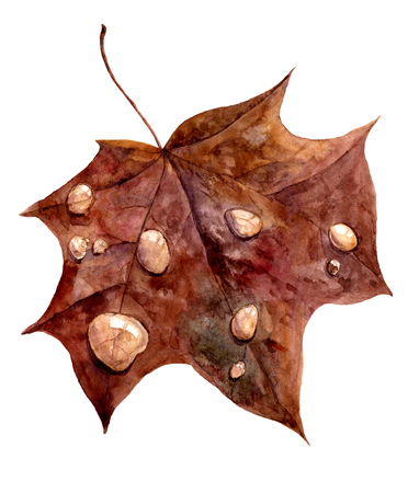 allegory: red autumn maple leaf with drops of rain, allegory autumn, hand drawn illustration Stock Photo