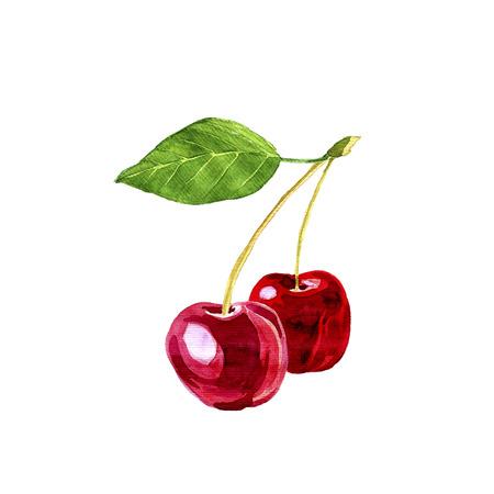 cereza: dibujo dos cerezas, bayas pintura art�sticos con la hoja de la acuarela, dibujado a mano ilustraci�n