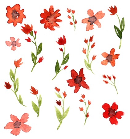 Set of watercolor drawing red flowers, artistic painting illustration