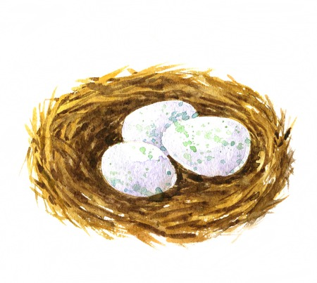 catbird: watercolor drawing nest with eggs, hand drawn artistic painting illustration, symbol of Easter