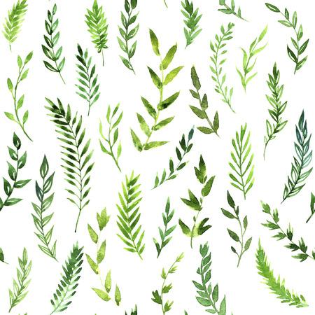 feuillage: pattern avec des feuilles vertes, branches abstraites dessin de l'aquarelle à fond blanc, dessiné à la main peinture artistique fond Banque d'images