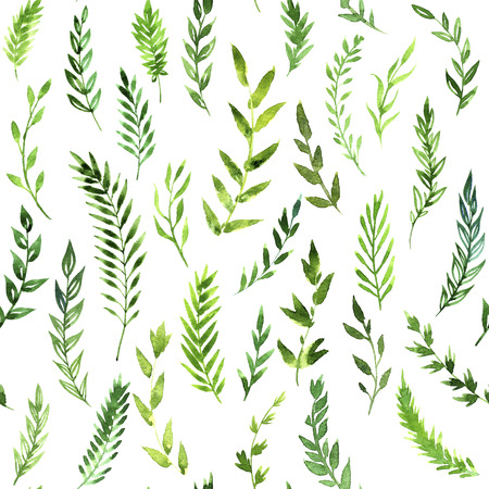 seamless pattern with green leaves,  abstract branches drawing by watercolor at white background, hand drawn artistic painting background Stock Photo