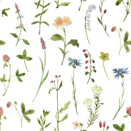 수채화 그리기 허브와 꽃과 원활한 플로랄 패턴, 예술 그림 꽃 배경 스톡 콘텐츠