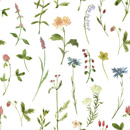 Seamless floral pattern with watercolor drawing herbs and flowers, artistic painting floral background Stock Photo