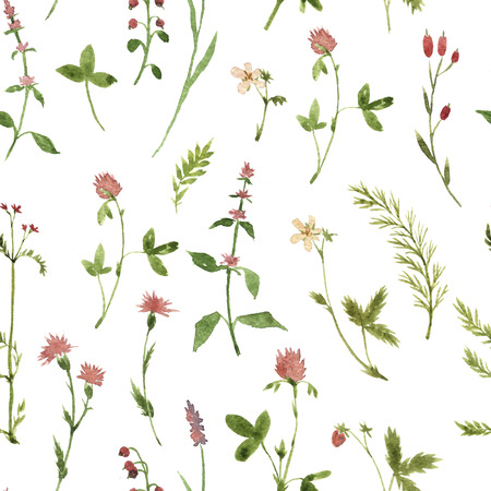 field flowers: Seamless floral pattern with watercolor drawing herbs and flowers, artistic painting floral background Stock Photo