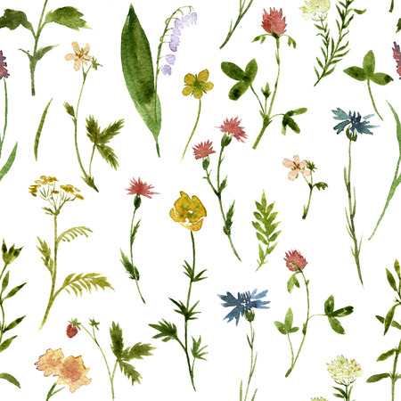 Seamless floral pattern with watercolor drawing herbs and flowers, artistic painting floral background 스톡 콘텐츠