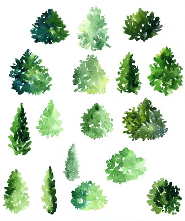 set of different deciduous trees, watercolor foliage, shrubs and trees, hand drawn forest, artistic painting illustration