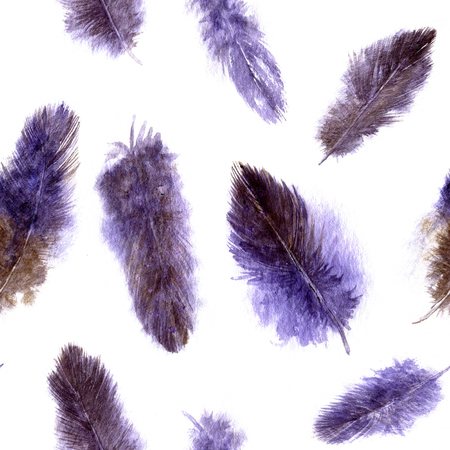 plumes: seamless pattern with purple fluffy plumes, watercolor drawing feathers at white background, hand drawn artistic painting illustration