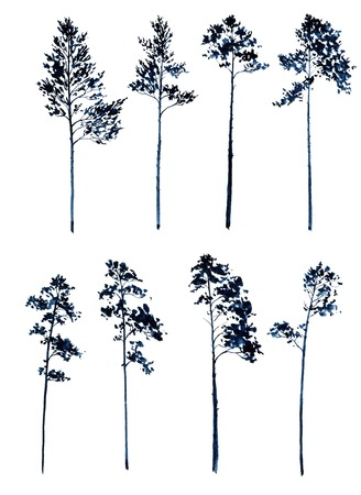 larch: set of pine trees drawing by dark blue watercolor, silhouettes of trees,hand drawn artistic painting illustration