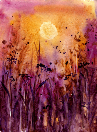 scarlet: abstract watercolor landscape with sunset in scarlet through the thick grass, evening sun in field, evening sun and forbs, watercolor meadow, hand drawn illustration, watercolor background