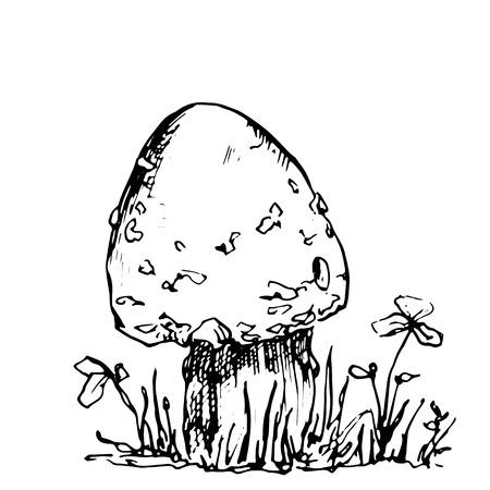 poisonous mushroom at grass, ink pen drawing, vintage style botanical illustration,  monochrome black line drawing floral composition