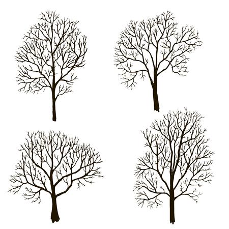 나뭇잎, 겨울 나무, 손으로 그린 벡터 illustartion, 디자인 요소없이 나무의 실루엣