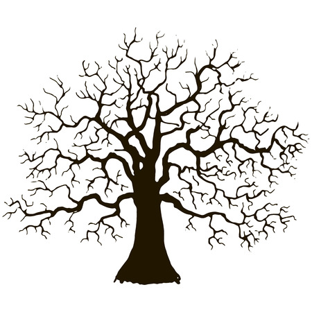 Silhouette of tree without leaves, winter tree, hand drawn vector illustartion