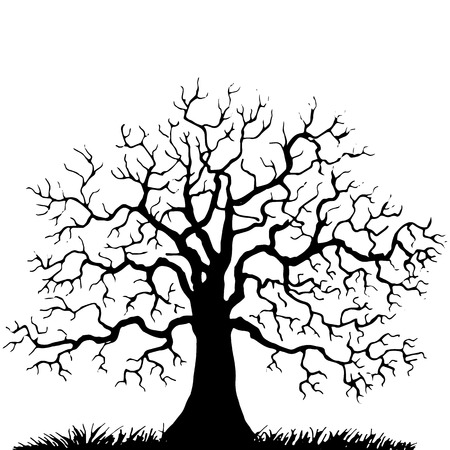 Silhouette of  tree without leaves, winter tree, hand drawn vector illustartion Illustration