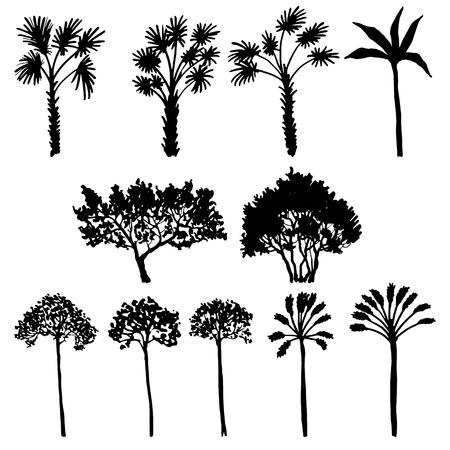 silhoette: set of palm tree silhouettes, exotic trees, hand drawn vector design elements