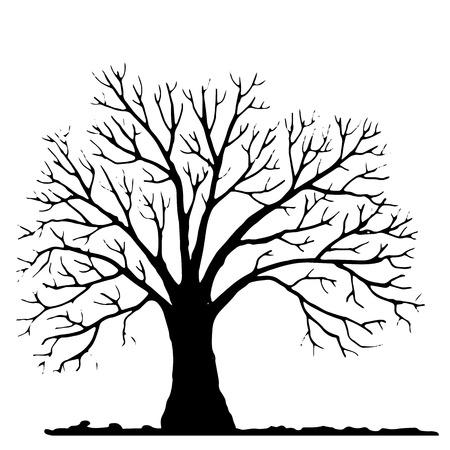 Silhouette di albero senza foglie, albero inverno, disegnati a mano vettore illustartion Vettoriali