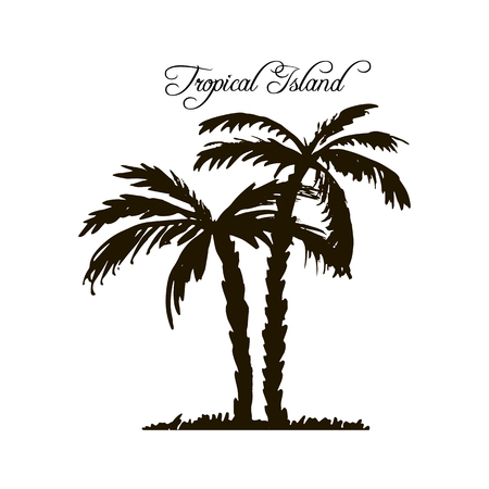 tropical island, vintage template, palm tree silhouettes at white background, exotic trees, hand drawn vector illustration Illustration