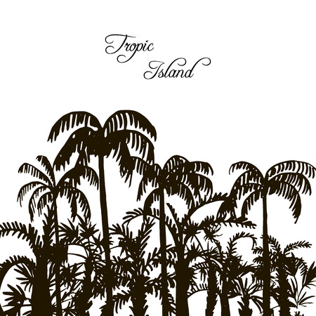 rain forest: tropical forest, rain forest, jungle, vintage template, palm tree silhouettes at white background, exotic trees, hand drawn vector illustration Illustration