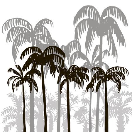 selva: selva tropical, selva tropical, selva, plantilla vintage, siluetas de palmeras en el fondo blanco, �rboles ex�ticos, dibujado a mano ilustraci�n vectorial