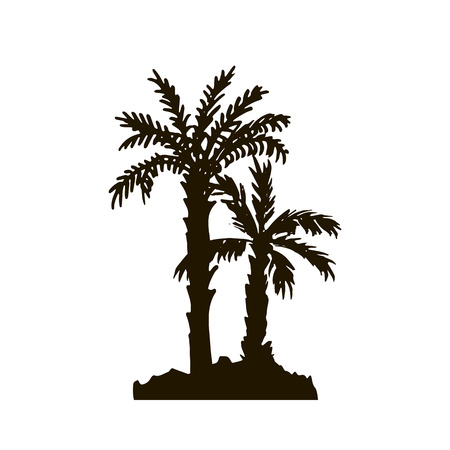 rain forest background: tropical forest, rain forest, jungle, vintage template, palm tree silhouettes at white background, exotic trees, hand drawn vector illustration Illustration