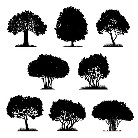 deciduous: set of tree silhouettes, deciduous trees and bushes, hand drawn vector design elements