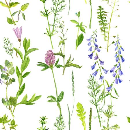naadloze patroon met waterverftekening van wilde bloemen, kruiden en bladeren, geschilderd wilde planten, botanische illustratie in vintage stijl, kleur tekening bloemen naadloze achtergrond