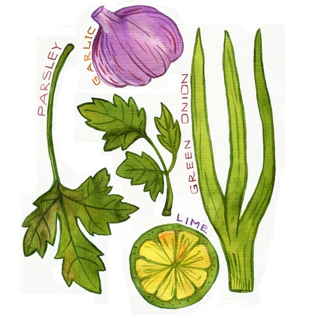 condiment: condiment, garlic and lime,parsley and green onion, drawing by watercolor, hand drawn art illustration