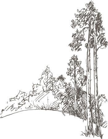 pinos y arbustos de dibujo de lápiz, bosquejo de la naturaleza salvaje, boceto bosque, dibujado a mano ilustración vectorial