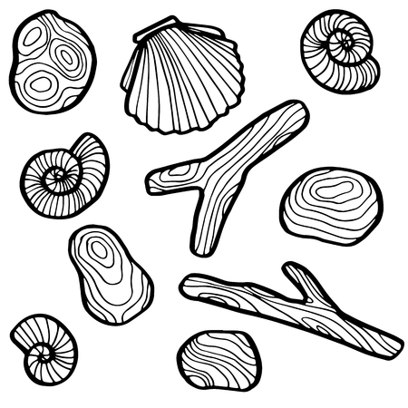 pebble: set of sea objects, shells and stones, hand drawn vector illustration