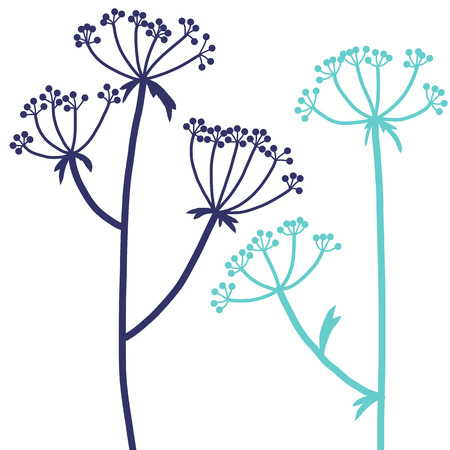 dill plants, floral composition with wild plants, drawing floral card, hand drawn vector illustration