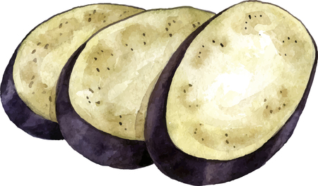 aubergine: watercolor drawing slices of eggplant,isolated at white background, hand drawn artistic vector illustration Illustration