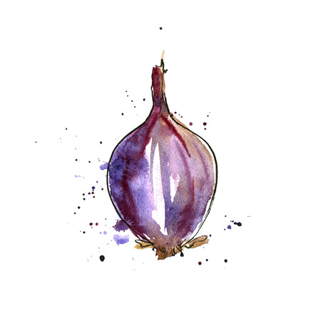 unpeeled: isolated purple watercolor onion with paint staines at white background, hand drawn watercolor illustration