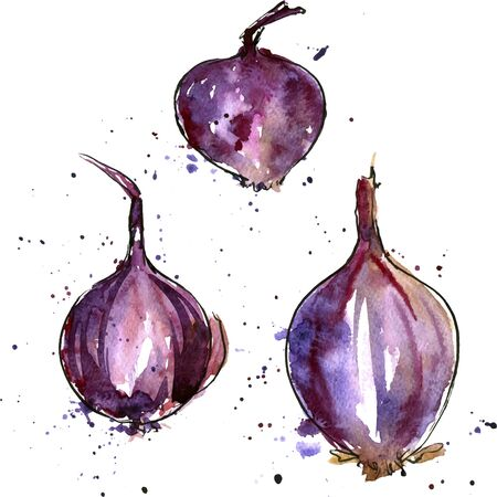 unpeeled: vector isolated purple watercolor onions with paint staines at white background, hand drawn watercolor illustration Illustration