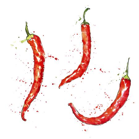 Vector acuarela chiles rojos con manchas de pintura en el fondo blanco, dibujado a mano ilustración artística
