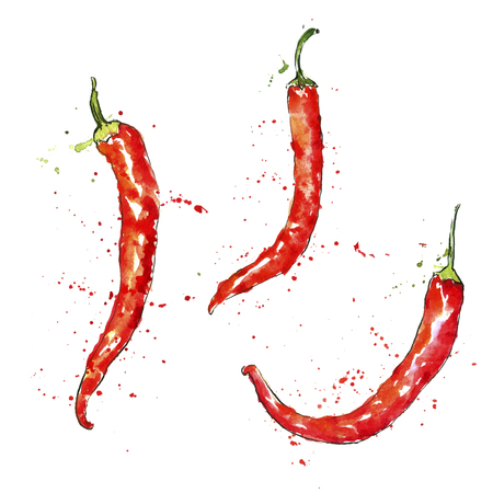 vector watercolor red chili peppers with paint staines at white background, hand drawn artistic illustration