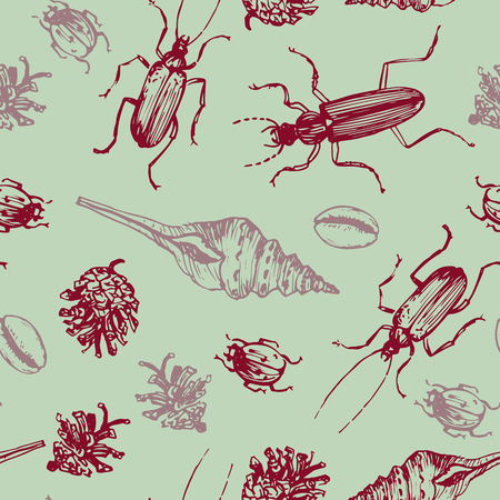 cone shell: seamless pattern with shells, pine cones and beatles, hand drawn vector illustration