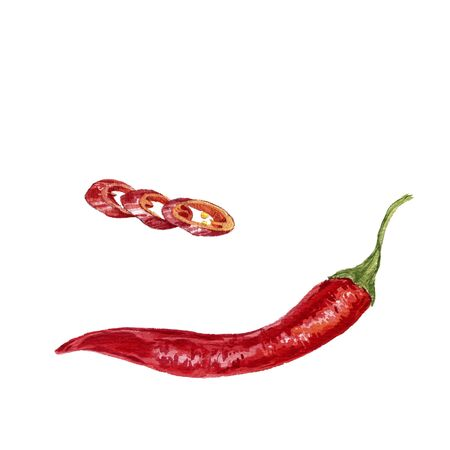chilli pepper: watercolor red chili pepper, whole pepper and slices at white background, hand drawn artistic illustration