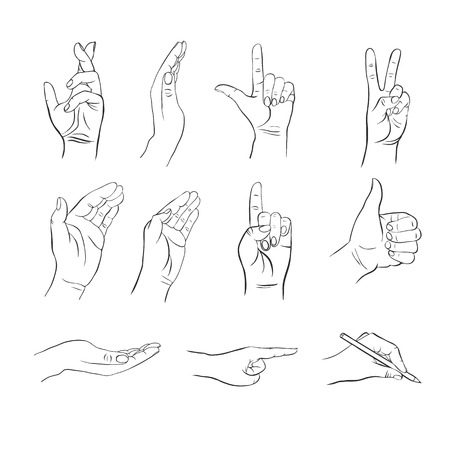 manos con diferentes gestos, manos con diferentes posiciones de los dedos, palmas de las manos abiertas, lo que indica la dirección de la mano, elementos del vector dibujado a mano