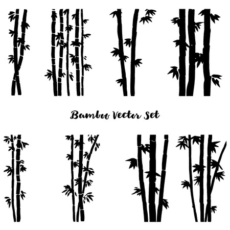 stalks: vector set of monochrome  bamboo, isolated bamboo stalks, bamboo forest, hand drawn vector illustration