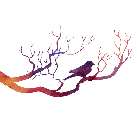 songbird: silhouette of bird at tree drawing by watercolor, hand drawn songbird at branch, hand drawn illustration