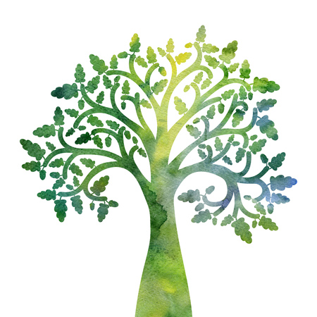 silhouette of oak tree with leaves drawing in watercolor, hand drawn illustration 스톡 콘텐츠