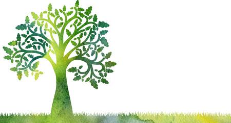 Silhouet van eiken boom met bladeren en eikels bij gras tekening in aquarel, artistieke hand schilderij illustratie Stockfoto