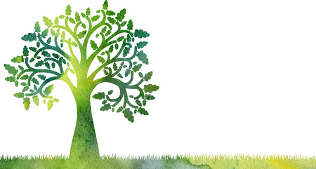 Silueta de roble con hojas y bellotas en hierba dibujo en acuarela, ilustración artística pintura a mano
