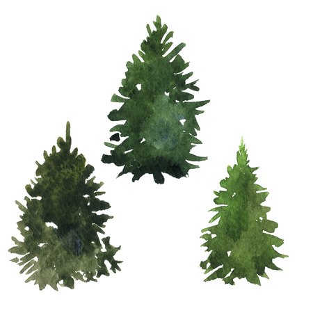 drawing trees: set of green fir trees drawing by watercolor, isolated forest element, conifer trees, hand drawn vector illustration