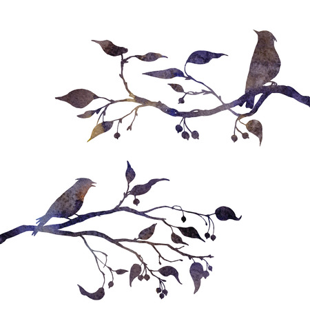 silhouettes of birds at tree drawing in watercolor, hand drawn waxwings at branches of wild apple tree, hand drawn illustration Banque d'images
