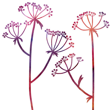 dill: dill plants drawing in watercolor, floral composition with wild plants, drawing floral card, watercolor artistic background, hand drawn  illustration