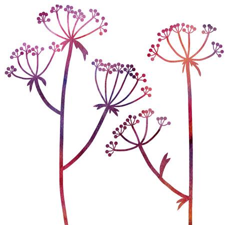 dille planten tekening in waterverf, bloemen compositie met wilde planten, tekening bloemen kaart, aquarel artistieke achtergrond, met de hand getrokken illustratie Stockfoto